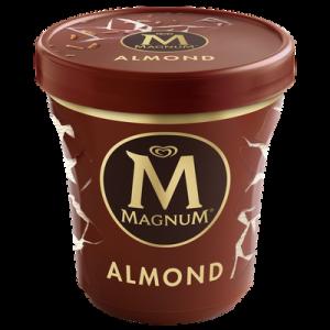 Crème glacée vanille avec du chocolat au lait et d'amandes MAGNUM, potde 297g